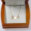 Zlatý náhrdelník zamilovaný pár